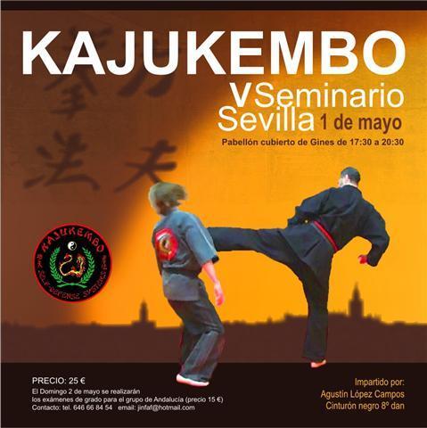Kajukembo en sevilla 1 mayo foro de artes marciales - Artes marciales sevilla ...